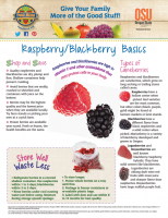 raspberry and blackberries basics